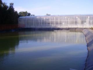 Bahçe Sulama Havuzu