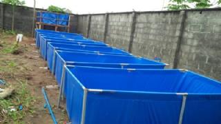 Balık Yetiştirme Havuzu Portatif Balık Yetiştirme Havuzu